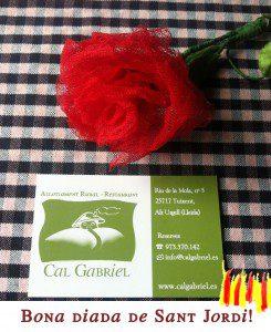 Bona diada de Sant Jordi 2016